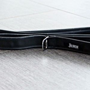 Jailbreak Dog Leash
